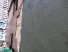 广州力争装饰公司为您提供外墙维修 防水补漏 高空作业等项目