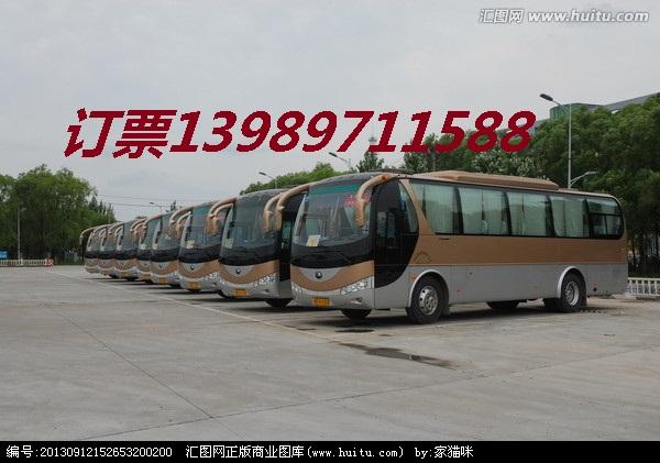 瑞安到周口客车/特快物流13989711588长途汽车
