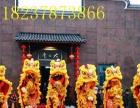 礼仪庆典活动策划,主演舞龙舞狮,节目表演