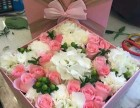 合肥裕丰花卉市场鲜花批发零售开业开张花篮发财树全市配送
