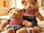 毛衣卷毛泰迪熊 情侣熊 毛绒玩具熊公仔娃娃玩偶 礼物