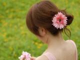 A014韩版非洲菊大花朵发圈 发绳太阳花发夹子两用 海滩 厂家批