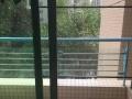 中澳新城景湖居精装1房1厅租金 家私电器齐全 押2付一