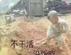 小区家庭清理保洁