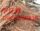 阳谷废铜废电缆回收高价