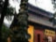 上海到普陀山二日游450上海到杭州乌镇二日游240