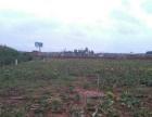 昆明市石林县55亩农耕地转让或出租,土质肥沃