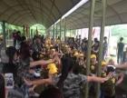 龙翔军旅世界一日游亲子比赛活动