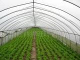 农用大棚、农用温室大棚 、大棚配件、农用