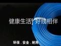 浙江中策电线BV1.5 未拆封