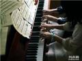 深圳最好的钢琴培训学校 深圳学钢琴哪里好