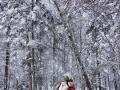 纯玩雪乡两日游 亚布力一日游