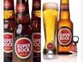 上虞波克啤酒批发葡萄牙进口啤酒 全区配送