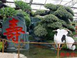 山东农业景观工程 优质生态园,厂家火热供应