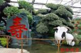 【厂家直销】潍坊品质好的生态园蔬菜园艺
