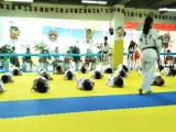 成都世豪跆拳道培訓 成都跆拳道-成都漢武堂