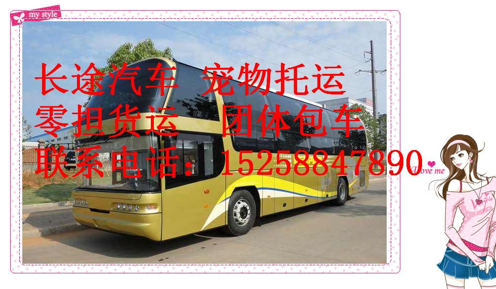 从 临海到沧州大巴车/豪华客车 15258847890+班次