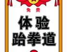 上海跆拳道/上海康桥跆拳道/上海康桥路少儿跆拳道培训班