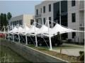 专业定制商业街膜结构汽车棚 工厂员工膜结构停车棚 品质保证