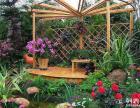 浙江温州室户外园林大型工程绿化,露天外景观建设设计施工