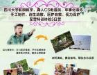 四川大学航模教学、视力保护军营特训体验5日营