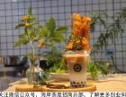 奶茶创业第一问:新手开奶茶店选址需要注意哪些?