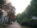 青峰花园,,百雅百苑,,城北花园155平米精品复式急售