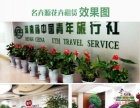 【名卉源】花卉租赁,绿植租摆,盆景租赁、道路绿化等