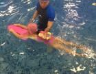 大连儿童游泳 贝贝鲸儿童游泳培训