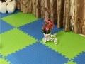 美凤地毯 美凤地毯加盟招商