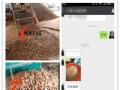 废物利用牧龙生物质木屑颗粒机,树皮、木材下脚料制粒