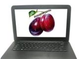 双核带光驱13.3寸苹果笔记本电脑/笔记本电脑/上网本电脑仅售1