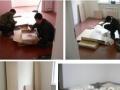 家具配送安装维修 柯桥万达 袍江