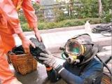 重庆水下安装作业,物品打捞