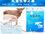 让乳猪毛色发亮健康成长乳命源乳猪奶粉