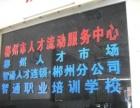 郴州零基础淘宝开店培训装修推广运营精英班学会为止