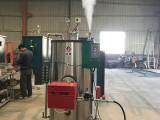 1吨燃气蒸汽发生器亮普一键式操作 低水位保护