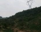 西甲村 土地 30000平米