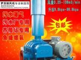 浙江罗茨风机厂 增氧鼓风机 污水处理曝气设备