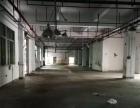 西乡镇九围一楼1500平方厂房出租