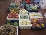 郑州春节集装箱蔬菜福利