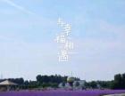 济南001文化传媒 婚庆 婚纱摄影 跟妆 录像