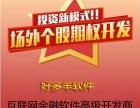 杭州个股期权软件系统开发股票点买APP定制