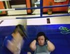 综合格斗,MMA,散打,泰拳,拳击,巴西柔术,女子防身术