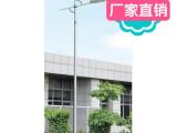 厂家直销 优质单臂路灯杆 LED节能 市