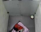 柚子宠物乐园寄养