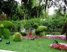重庆园林设计专业招生+美从这里开始+放飞你的梦想