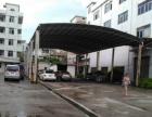 石碣刘屋标准厂房出租700平方米水电齐全