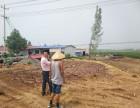 年产25万张木制拼合板建设项目