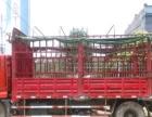 带司机出租6.8米货车